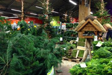 ドイツの大型園芸店(クリスマス関連売り場)