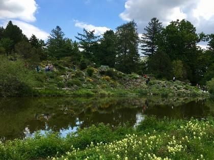 ドイツの植物園 池の対岸に広がるロックガーデン